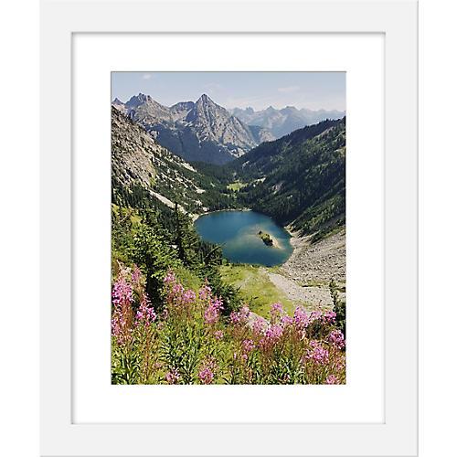 Kevin Russ, Cascade Summer Wildflowers