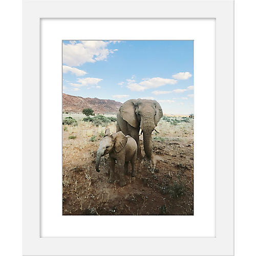 Kevin Russ, Desert Elephants