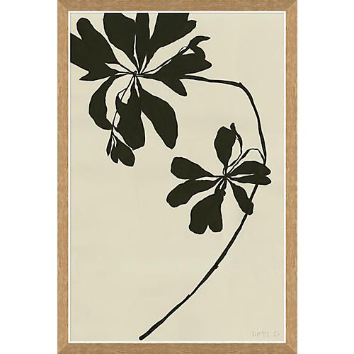 Susan Hable, Mediterranean Leaf