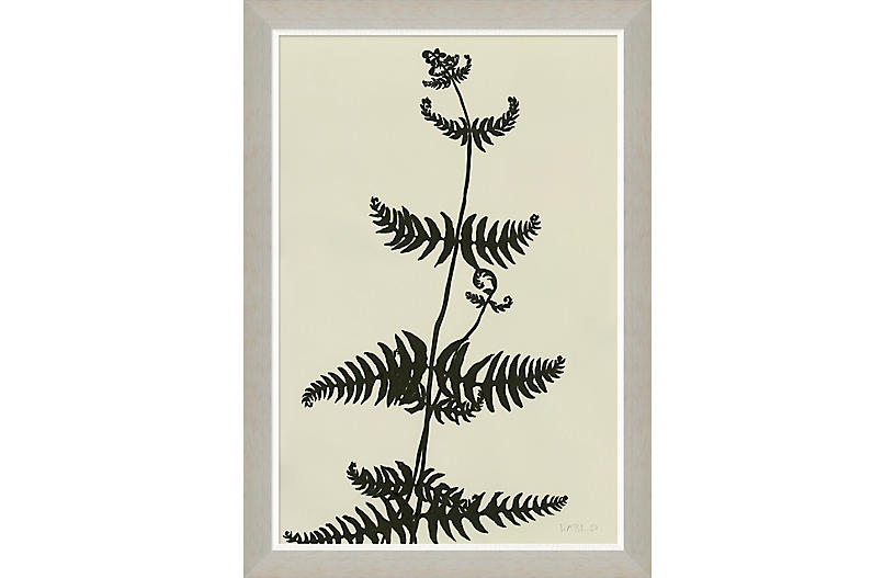 Susan Hable, Fern