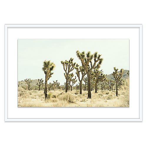 Christine Flynn, Joshua Tree I