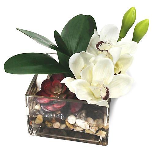 """8"""" Orchids & Succulent w/ Square Vase, Faux"""