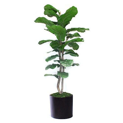 """90"""" Tall Fiddle-Leaf Fig w/ Tapered Planter, Faux"""