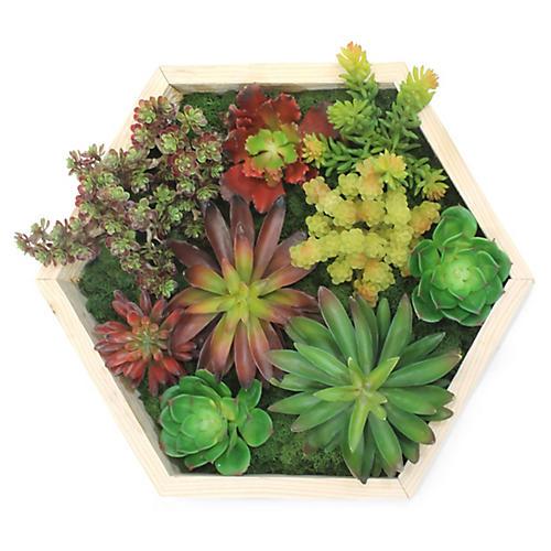"""16"""" Hexagonal Succulent Wall Piece, Faux"""
