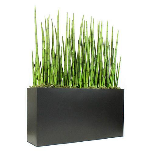 "48"" Snake Grasses w/ Wide Planter, Faux"