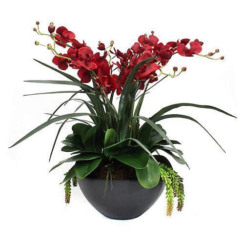"""28"""" Red Orchid Arrangement w/ Planter, Faux"""