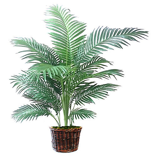 "54"" Palm Tree w/ Basket Planter, Faux"
