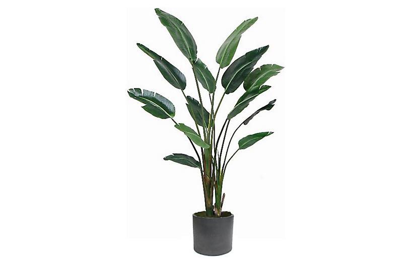 Travelers Palm w/ Black Planter, Faux