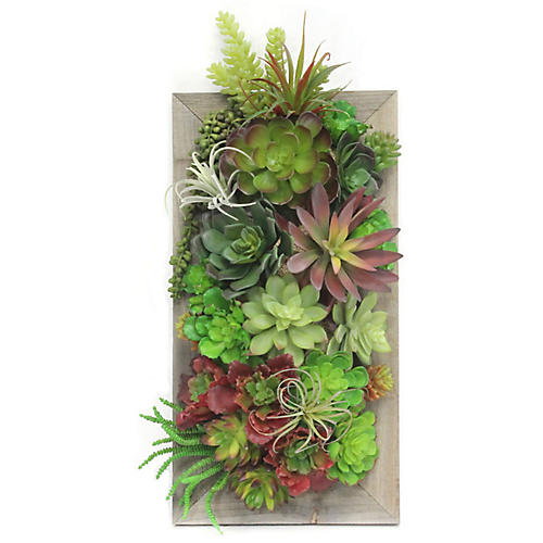 """23"""" Mixed Succulents Framed Wall Piece, Faux"""