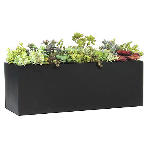 """42"""" Mixed Succulents w/ Tall & Wide Planter, Faux"""