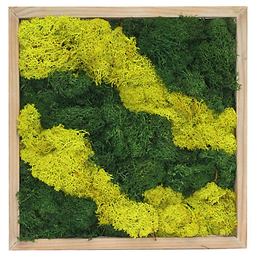 """10"""" Moss Wall Tile, Preserved"""
