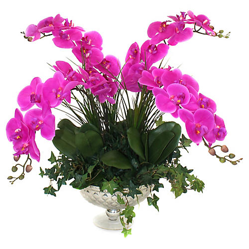 "26"" Fuchsia Orchids w/ Pedestal Bowl, Faux"