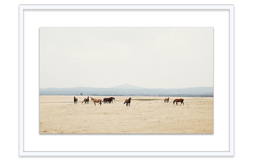 Christine Flynn, Wild Horses II
