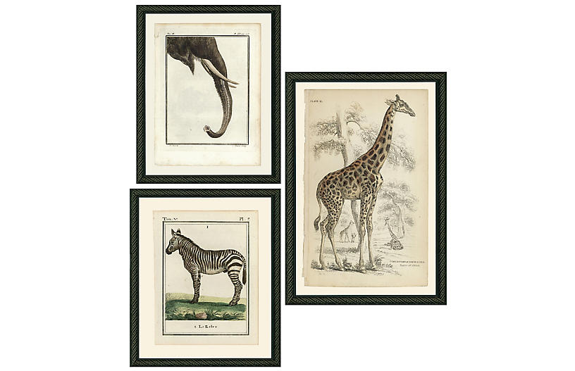 Smith & Co., Safari Animals
