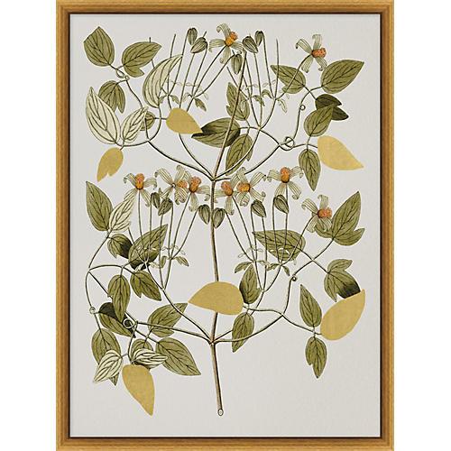 Gilded Botanicals II