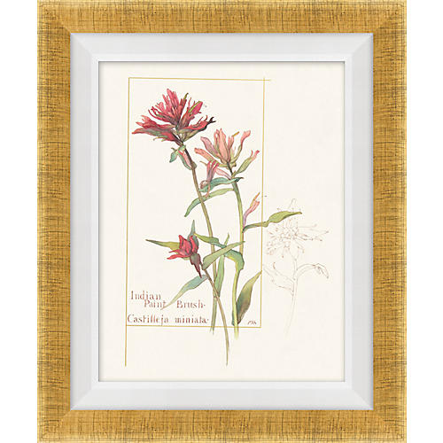 Floral Lithograph II