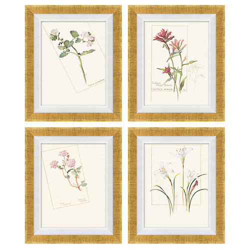 Set of 4 Floral Lithograph