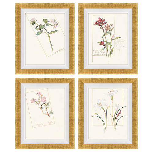 S/4 Floral Lithographs