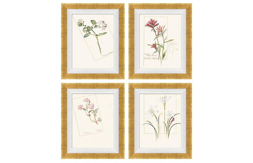 S/4 Floral Lithographs