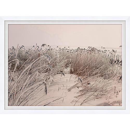 Sepia Sand Dune I