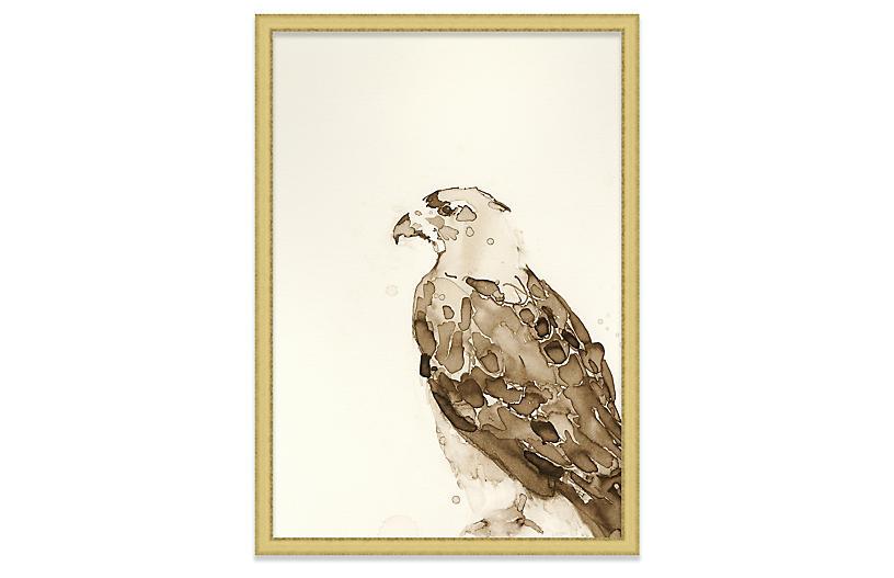 Mary H. Case, Hawk III