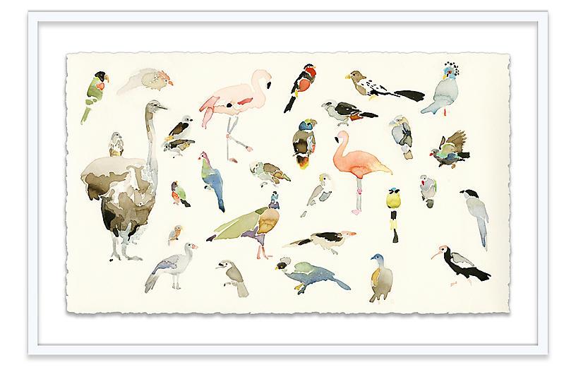 Mary H. Case, Bird Chart