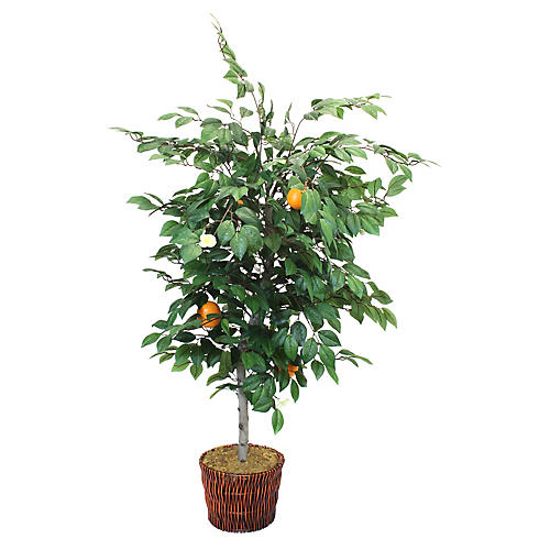 "54"" Orange Tree w/ Basket, Faux"