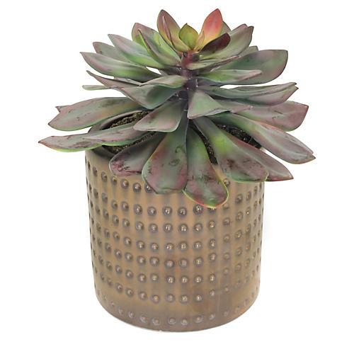 """12"""" Large Succulent Plant w/ Dimple Pot, Faux"""