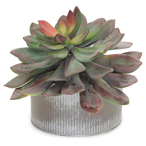 """11"""" Large Succulent Plant w/ Tin Pot, Faux"""