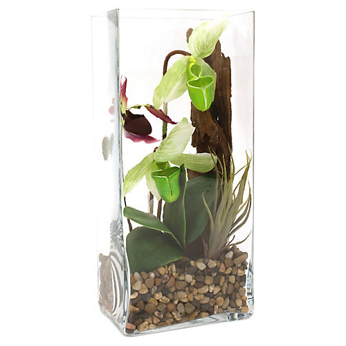 """16"""" Orchid Terrarium, Faux"""