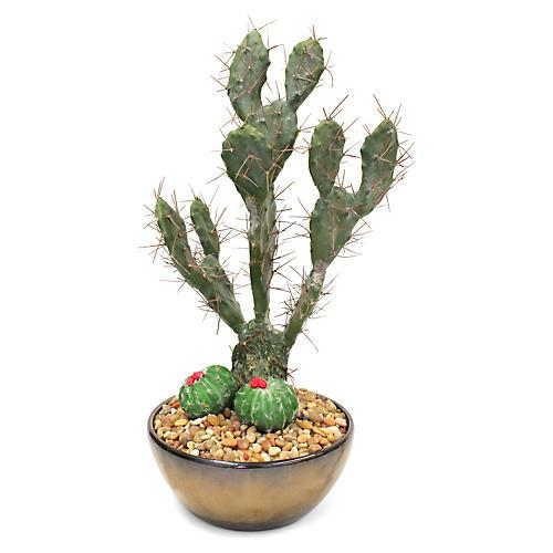 "23"" Prickly Cactus w/ Bowl Vessel, Faux"