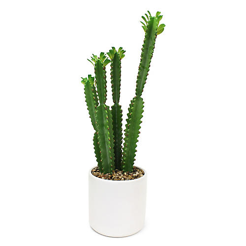 """30"""" Tall Cactus w/ Vessel, Faux"""