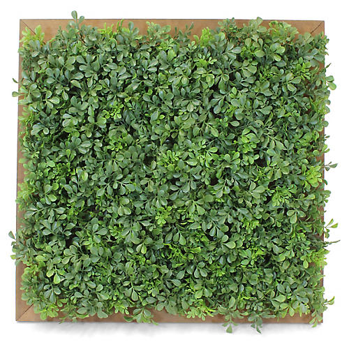 "23"" Square Boxwood Wall Piece, Faux"