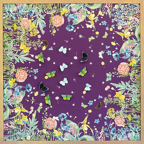 Dawn Wolfe, Purple Scarf w/ Butterflies