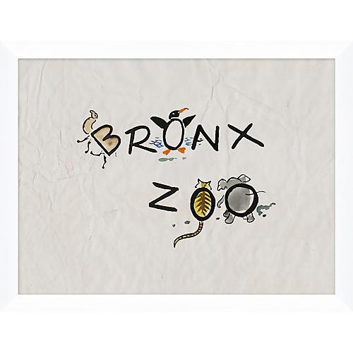 Bronx Zoo Animals