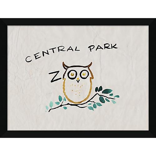 Central Park Zoo Owl