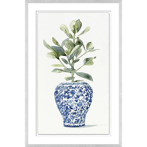 Plant in Ginger Vase II
