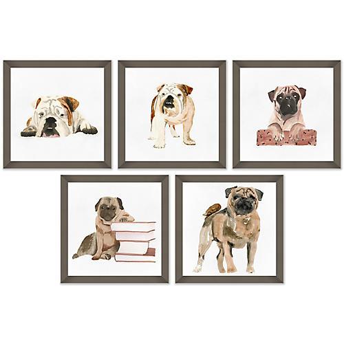 S/5 Pup Portraits