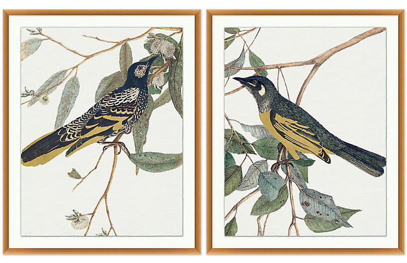 S/2 Perched Birds