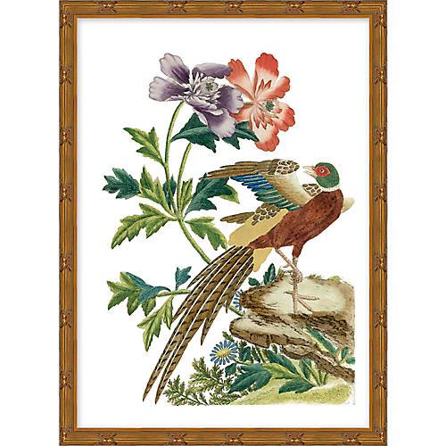Multicolor Chinoiserie Birds II