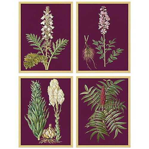 S/4 Purple Flower Lithographs