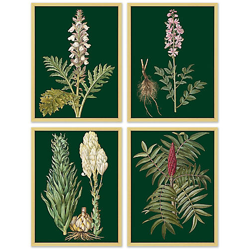 S/4 Green Flower Lithographs