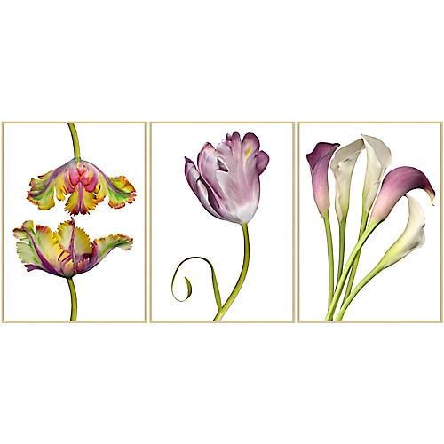 Lillian August, Flowers on White 1-3