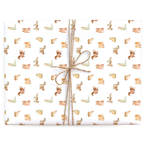 S/3 Cat Wash Gift Wrap