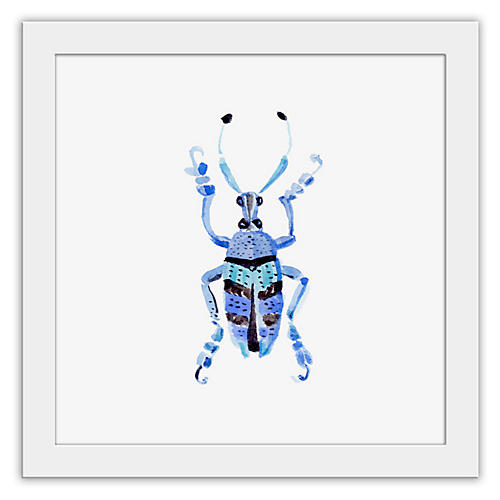 Cathy Graham, Blue Bug