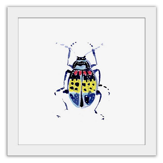 "Cathy's paintings of insects, such as this one of a beetle, capture all of their beauty (and none of any perceived ""ick"" factor)."