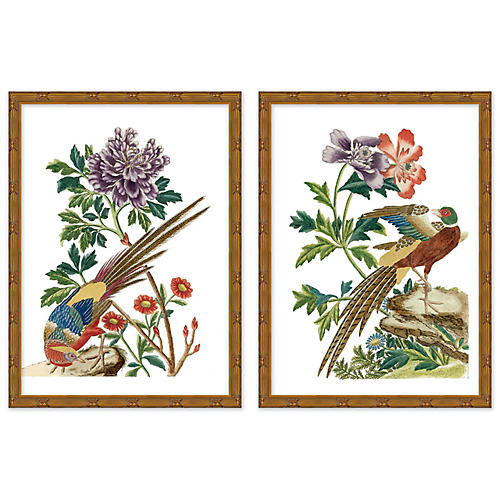 Multicolor Chinoiserie Birds Set