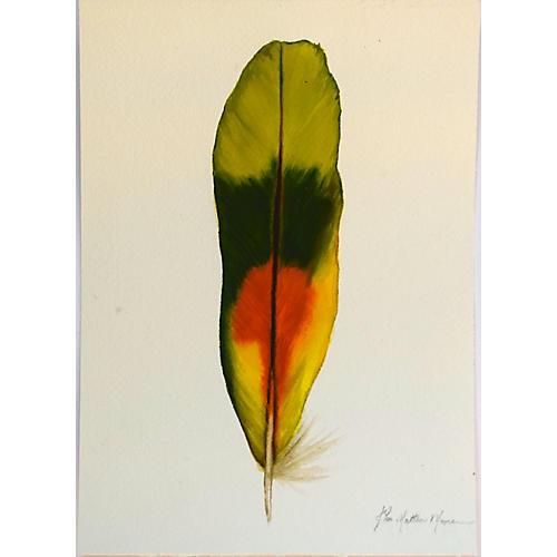John Matthew Moore, Parrot Series II
