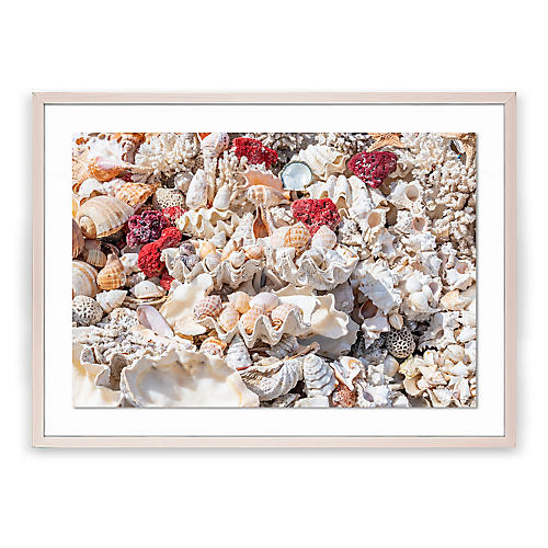 Richard Silver, Egyptian Shells I