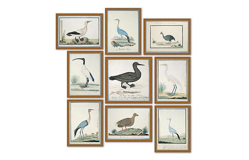 Coastal Birds set of 9